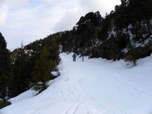 DSCN5264スキーで終点に