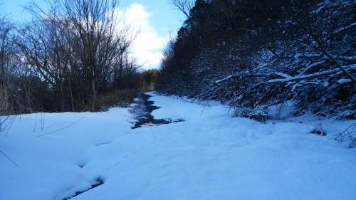IMG_20160225_林道雪少し