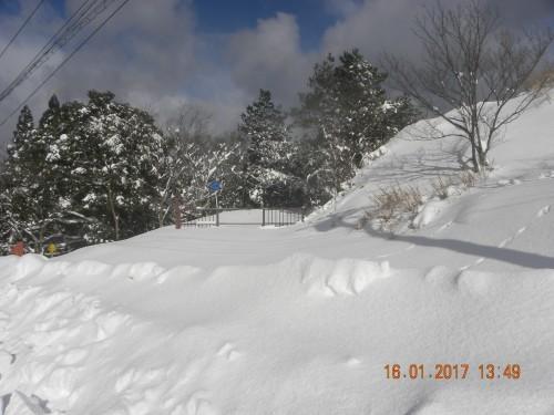 杉山林道入り口