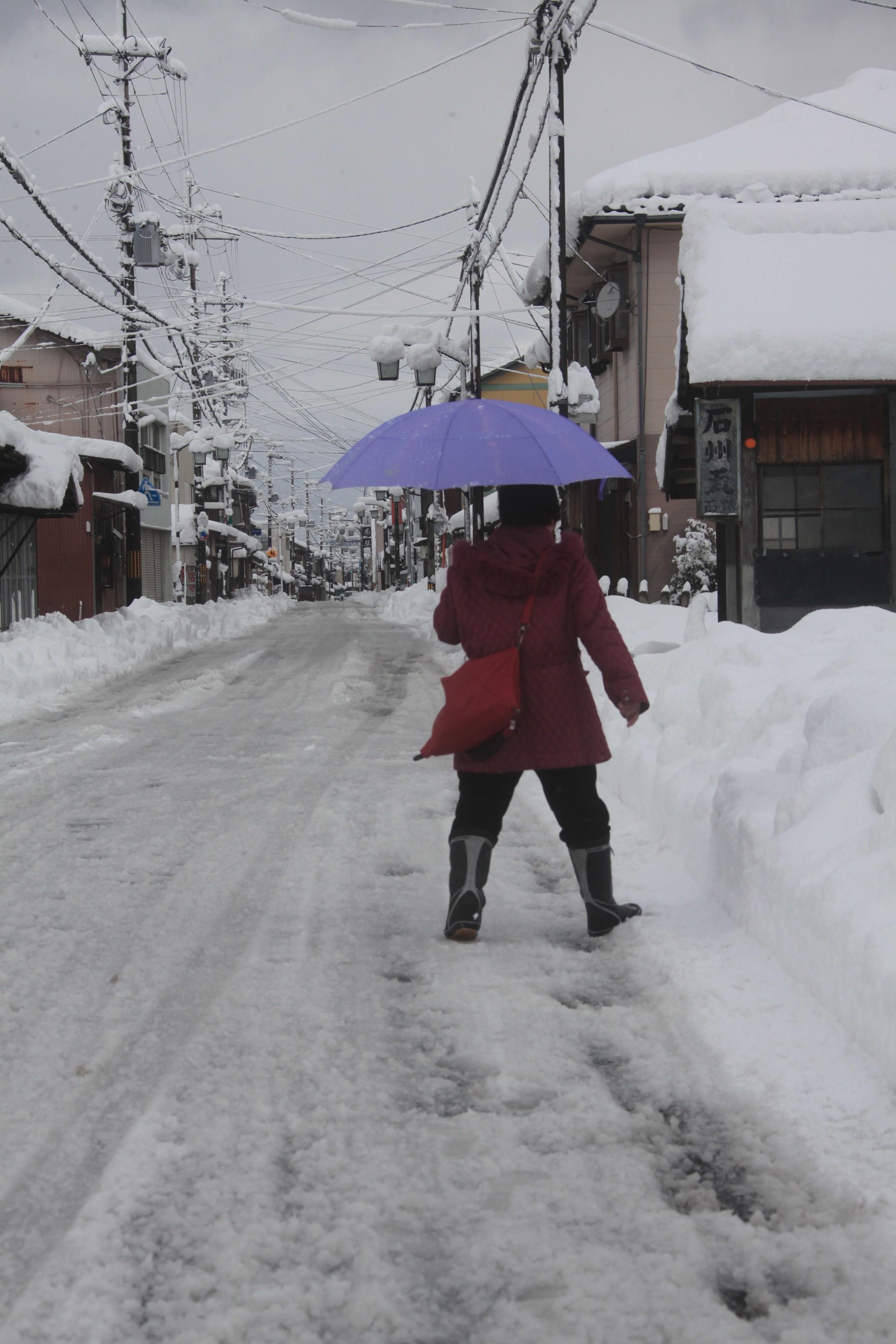 雪のいと高う降りたるを 品詞分解