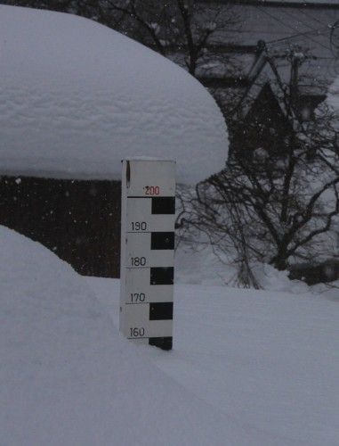 IMG_2150雪