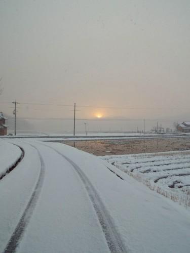 DSCF5874雪