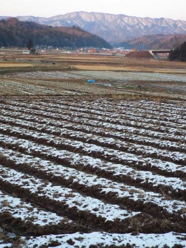 DSCF6119雪