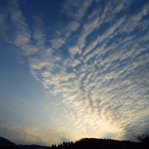 DSCF2359鱗雲